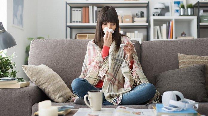 Использование шиповника при простудных заболеваниях