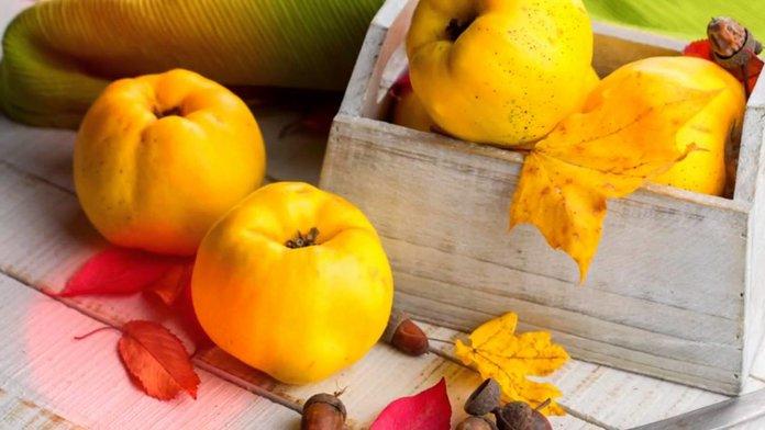 Состав и калорийность айвы