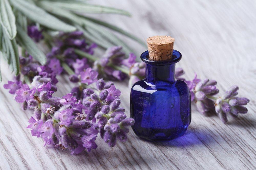 Эфирное масло шалфея: свойства и применение