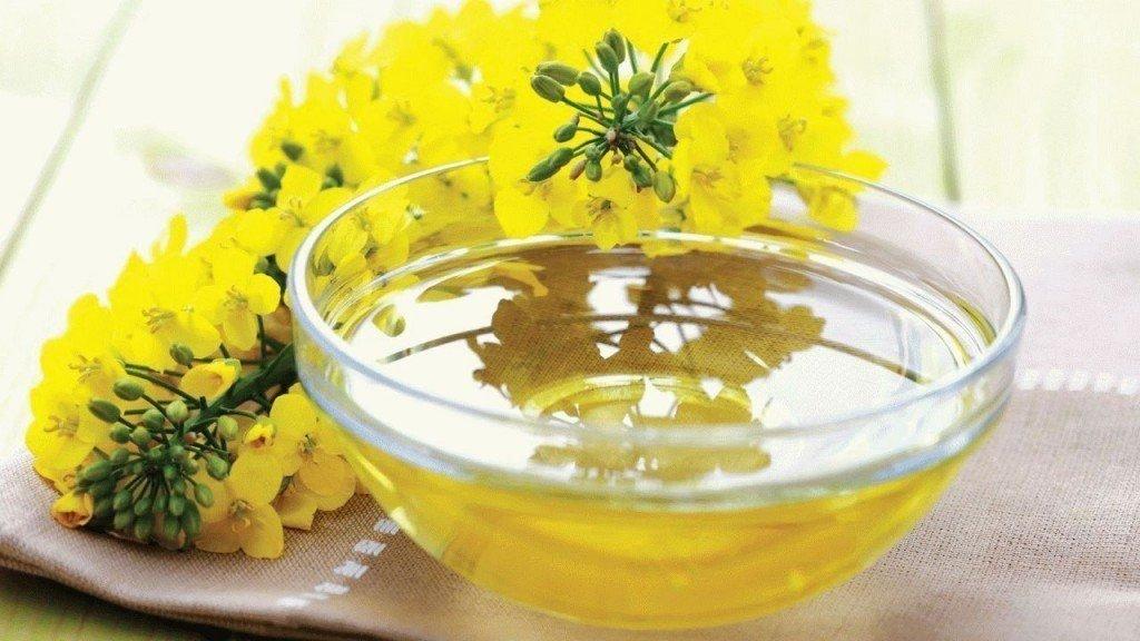 Химический состав рапсового масла