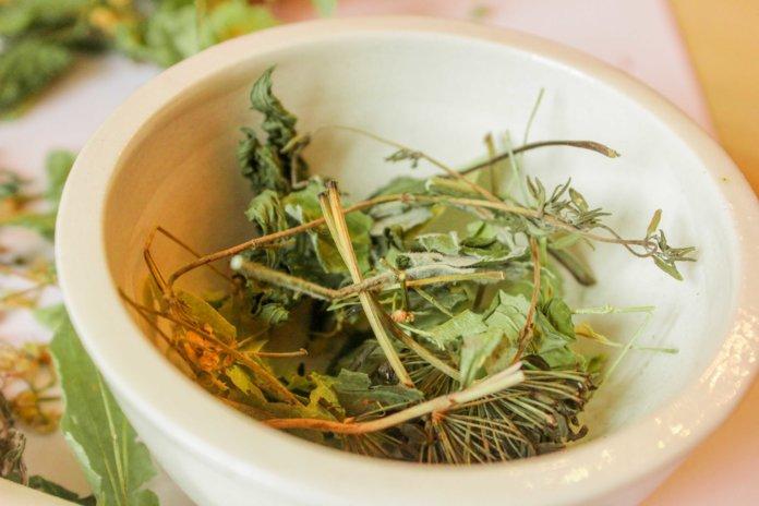 Травяные сборы от грибка
