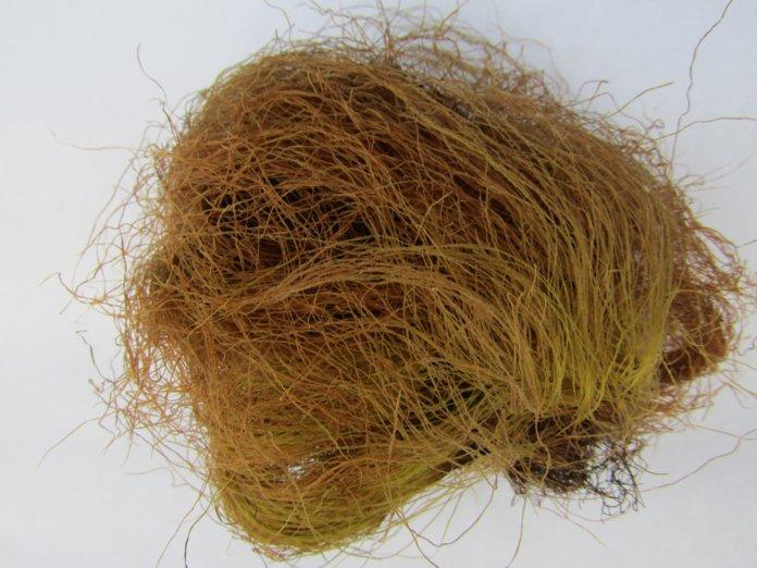 Кукурузные рыльца для настойки