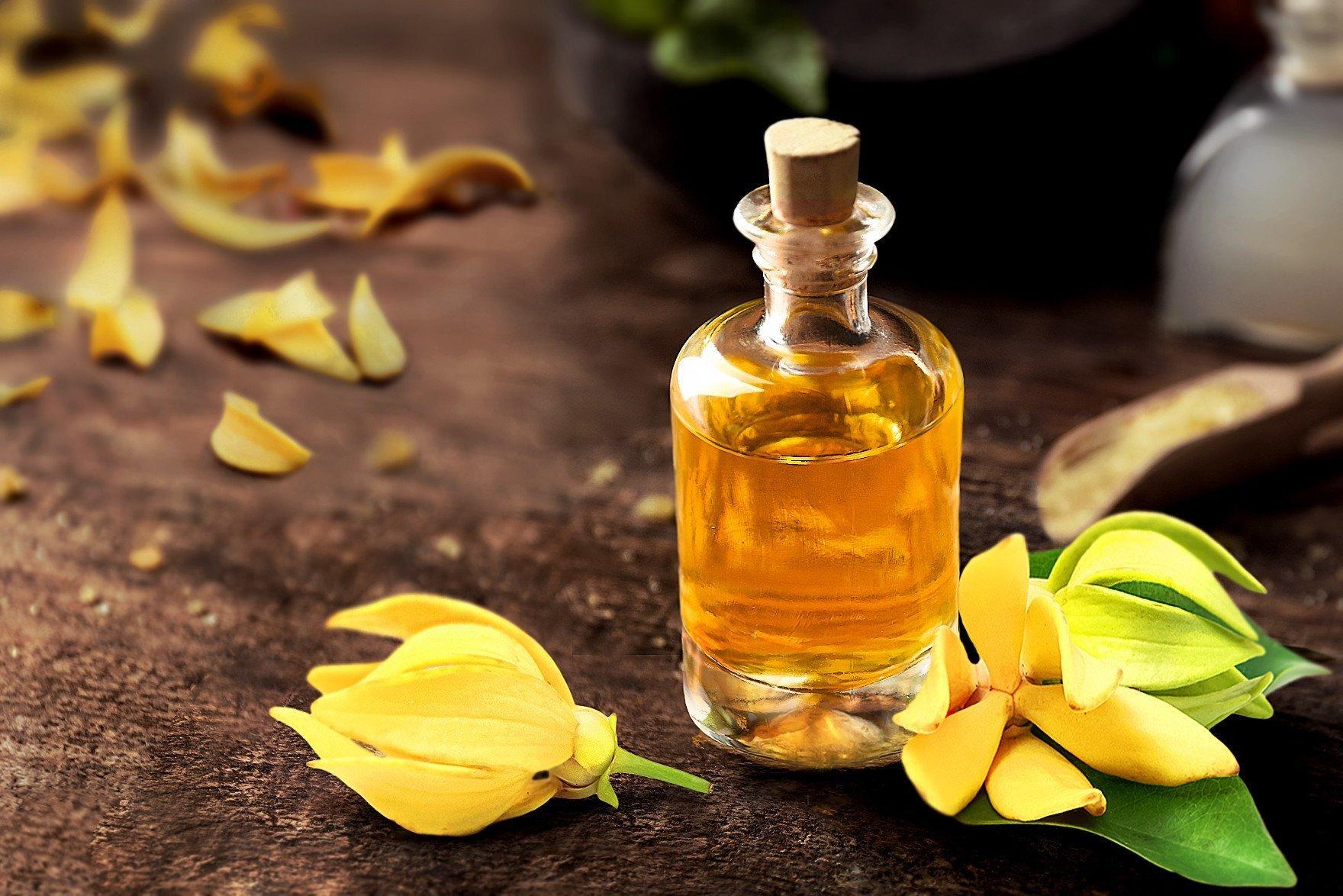 Эфирное масло иланг иланг: свойства и применение