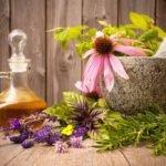 Лечение язвы желудка эффективными народными средствами
