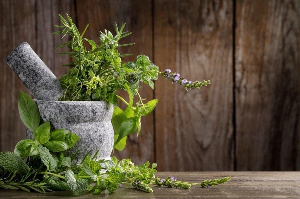 Лечение бессонницы травами