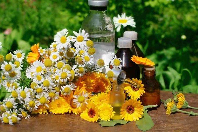 лечение хеликобактерного гастрита народными средствами