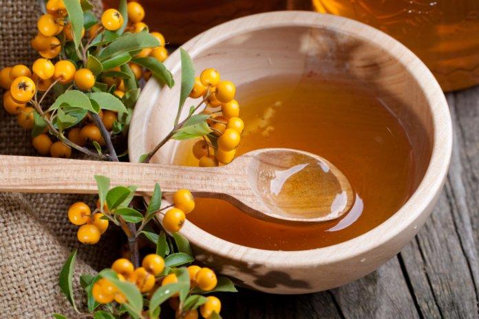 Мёд для лечения катаракты