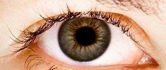 Лечение глаукомы медом и другими народными средствами