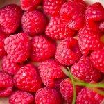 Лечебные свойства и применение малины