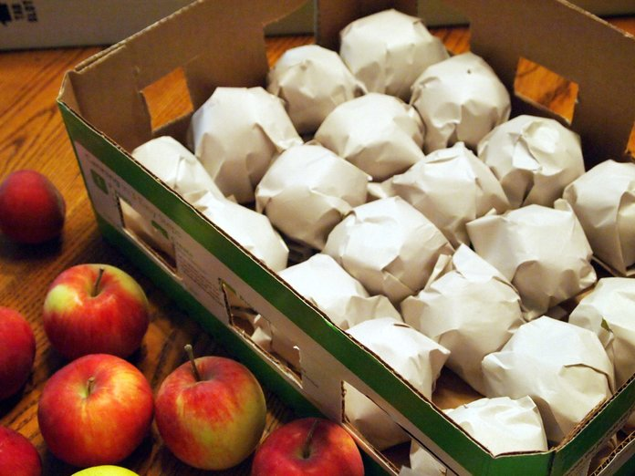Хранение лесных яблок