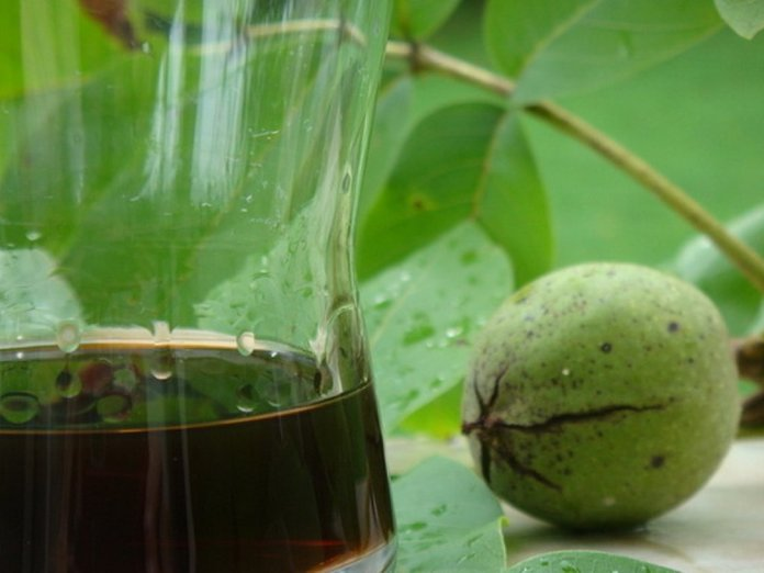Околоплодники грецкого ореха от глистов