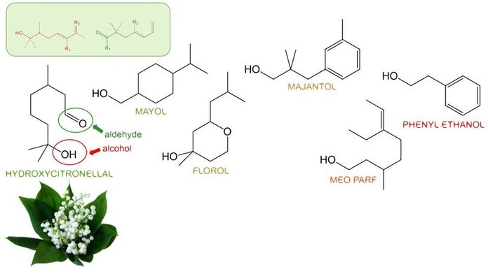 Химическая формула ландыша