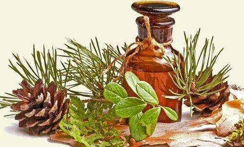применение пихтового масла