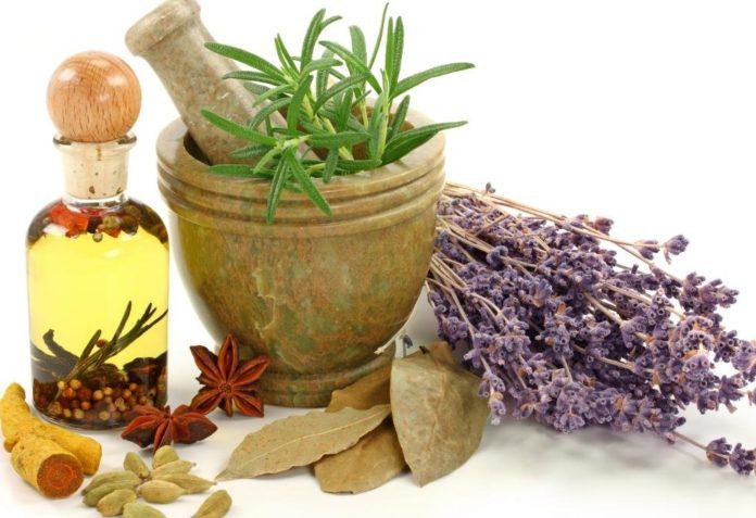 Ингредиенты домашнего лечения поджелудочной железы