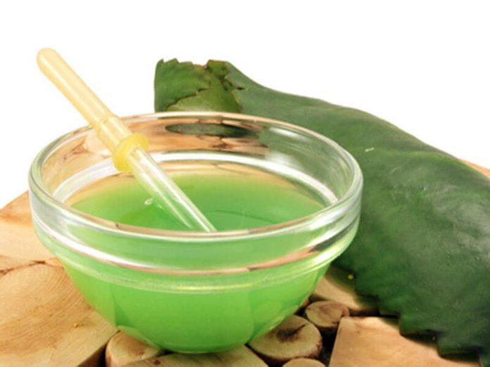 Сок из листьев каланхоэ