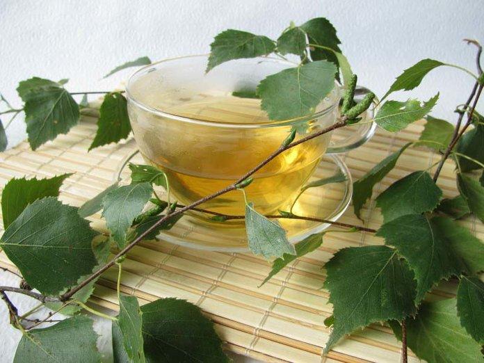 Чай из листьев березы
