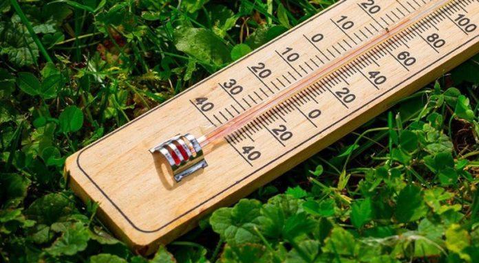 Комнатный термометр для растений