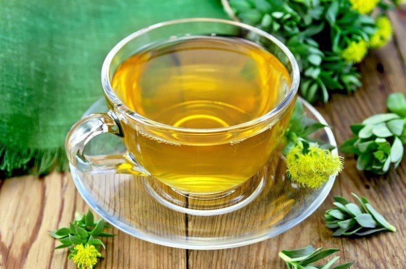Золотой корень лечебные свойства и противопоказания