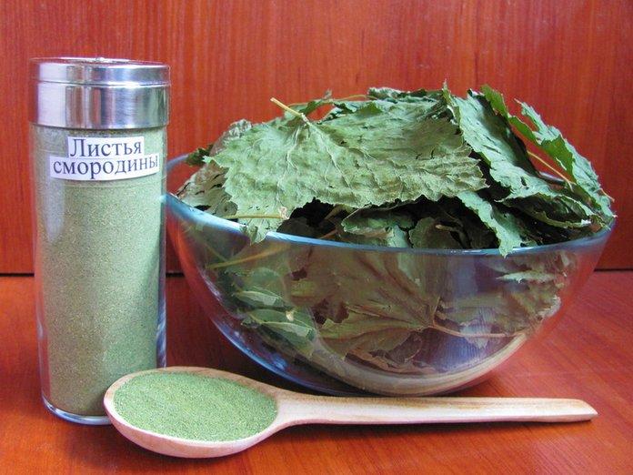 Рецепты из листьев чёрной смородины