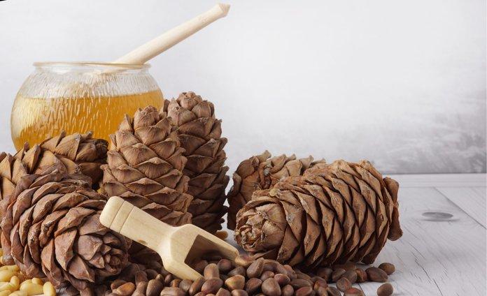 Живичный бальзам и кедровые орехи