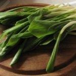 Черемша: полезные свойства и рецепты приготовления