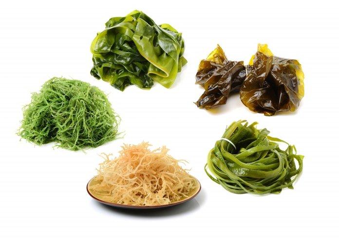 Разные виды обработки морской капусты