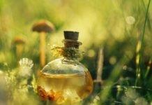 Эфирное масло чайного дерева отзывы о применении