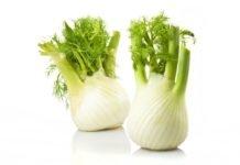 Плоды и семена фенхеля лечебные свойства и применение