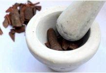 Кора осины лечебные свойства — от чего помогает кора осины