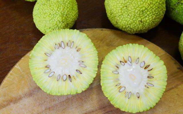 Народная медицина адамово яблоко рецепт настойки для суставов рецепт ортопедические товары бандаж голеностопный сустав