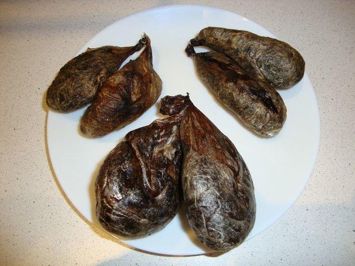Какими дозами употреблять бобровую струю