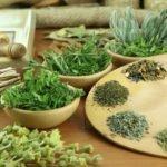 Травы от глистов и паразитов у человека