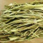 Кора осины от паразитов лечение и рецепты