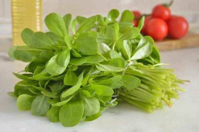 В кулинарии применяются верхние молодые побеги и листья портулака