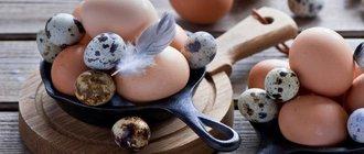 Есть ли холестерин в яйцах?