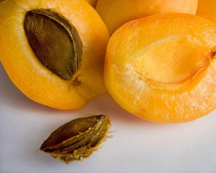 Посев абрикоса