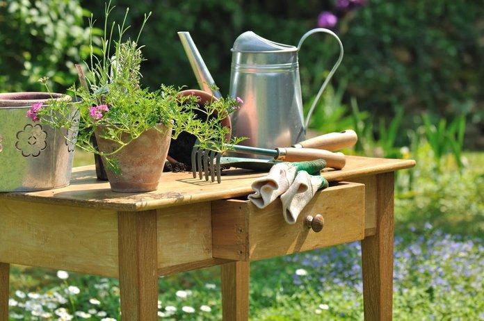Инструменты для посадки зелени