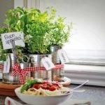 Как вырастить салат дома на подоконнике?