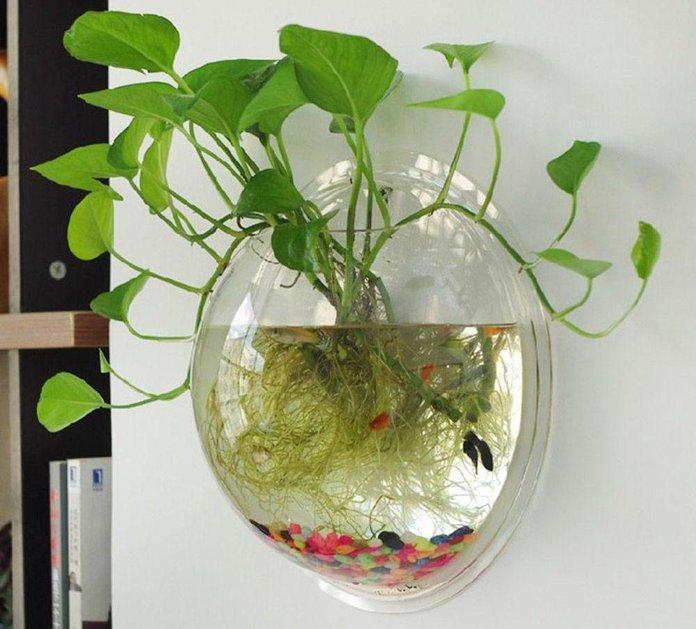 водяной цветок