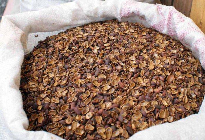 Сухая скорлупа орешков