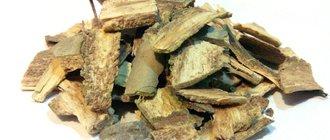 Полезные свойства осиновой коры