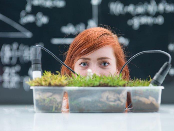 Девушка изучает состав растения в лаборатории