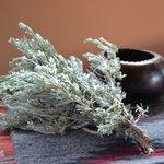 Сухая полынь для приготовления лекарства от герпеса