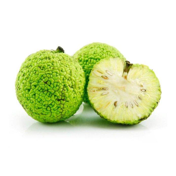 Адамово яблоко: полезные свойства и противопоказания