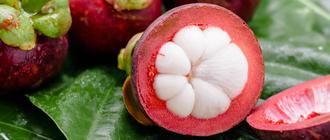 Полезные свойства мангостина