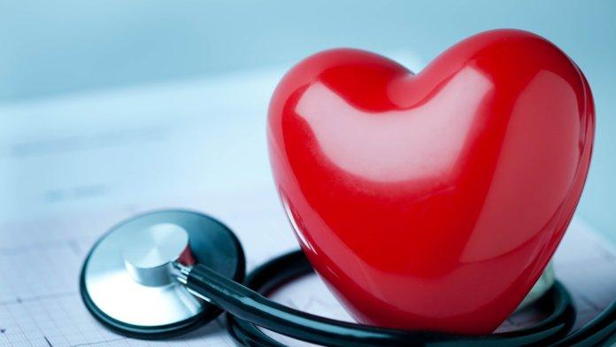 Отвар из цикория улучшает сердечно-сосудистую систему человека