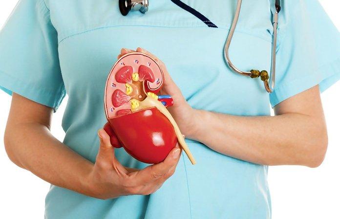 Обращение к врачу при болезнях почек
