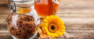 Перга: лечебные свойства и противопоказания