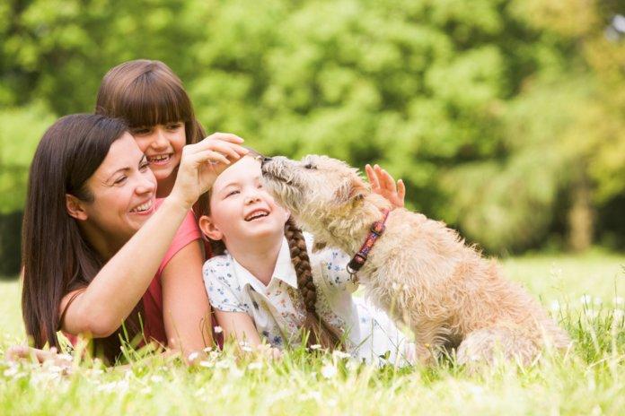 Семья с детьми и домашними животными