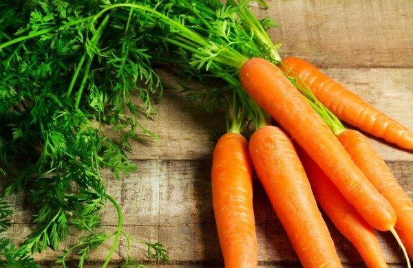 Морковная ботва однолетнего растения